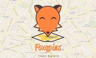 Visueel van project Foxypins