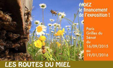 Project visual aidons-les-abeilles-aidez-les-abeilles