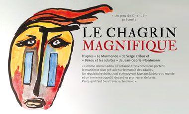 Visueel van project Votre premier Chagrin Magnifique à Avignon