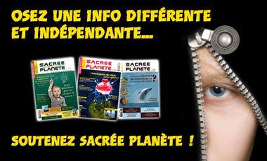 Visueel van project Magazine SACREE PLANETE