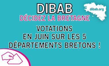 Visuel du projet Soutenez DIBAB pour organiser des votations en juin sur les 5 départements bretons !