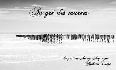 """Project visual """"Au gré des marées"""" - Exposition Photo"""