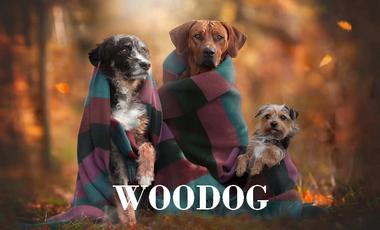 Project visual WooDog