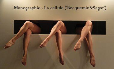 Visueel van project Catalogue La cellule (Becquemin&Sagot)