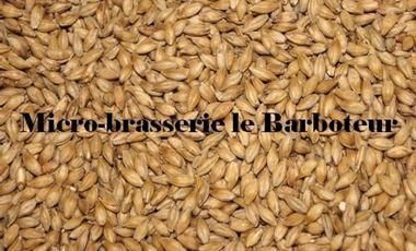 Visuel du projet Microbrasserie le Barboteur