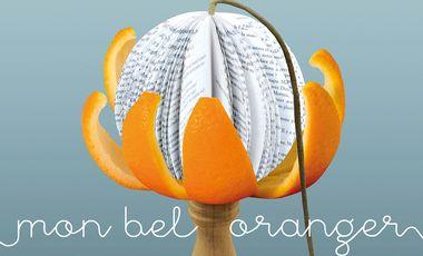 Visueel van project Mon bel oranger - Avignon 2015 !