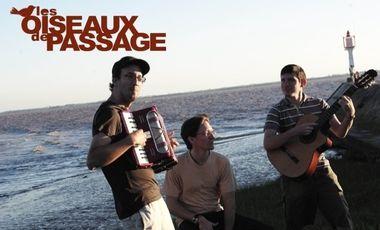 Project visual Les Oiseaux de Passage : L'Album