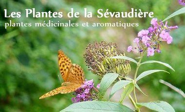 Visuel du projet Les Plantes de la Sévaudière