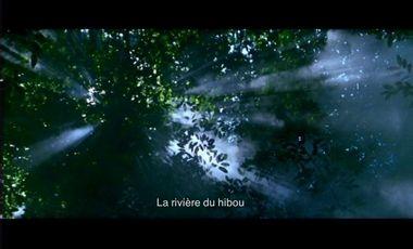 Visueel van project Projet court-métrage : la rivière du hibou