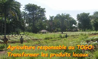 Project visual Agriculture responsable: un atelier de transformation au Nord Togo