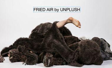 Visueel van project Fried Air by Unplush