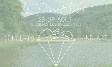 Visuel du projet Festival Le Diamant Vert