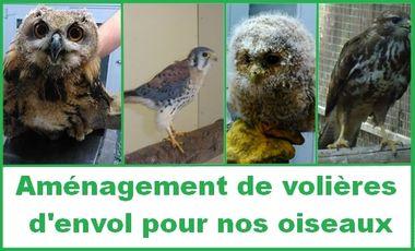 Visueel van project Le Martinet : Aménagement de volières pour oiseaux en revalidation