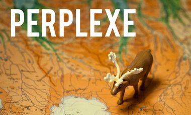 Visueel van project PERPLEXE
