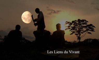Project visual Les Liens du Vivant