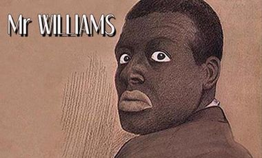 Visueel van project Mr Williams