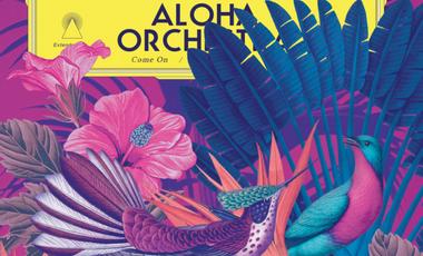 Visuel du projet Aloha Orchestra - Vinyle!
