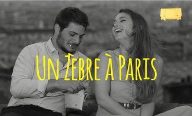 Visuel du projet Un zèbre à Paris fait une blague ....pas comme les autres