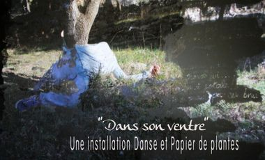 Project visual Installation Danse/Papier de plantes