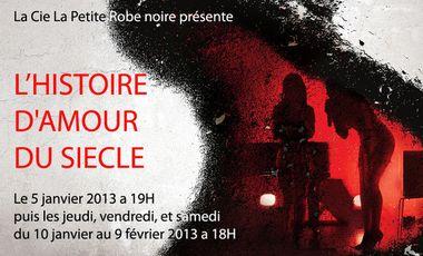 Visueel van project L'histoire d'amour du siècle