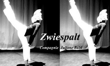 Visuel du projet Zwiespalt