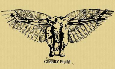 Visueel van project Cherry Plum, mini album 6 titres