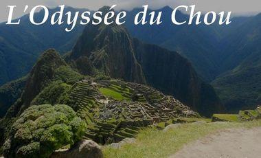 Visueel van project L'odysée du chou