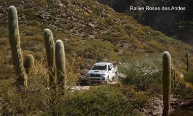 Project visual Rallye Roses des Andes