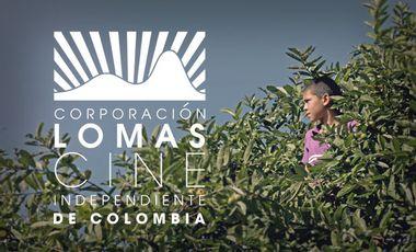 Visueel van project Lomas