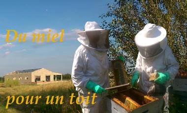 Project visual Du miel pour un toit