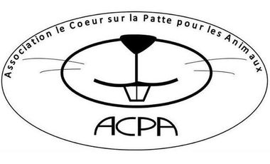 Visueel van project Financement d'opération association ACPA