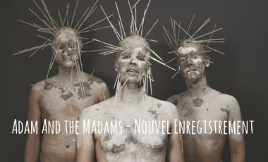 Project visual Adam and the Madams - Nouvel enregistrement!