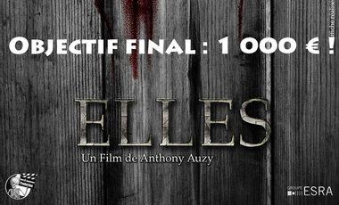 Visueel van project Elles