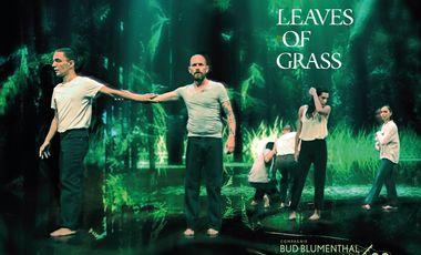 Project visual Leaves of Grass