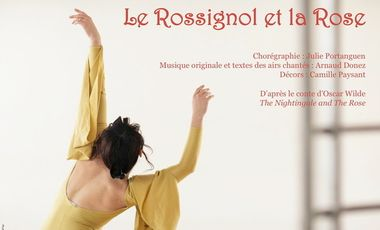 Project visual Le Rossignol et la Rose