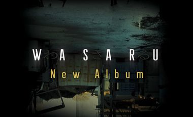 Project visual Wasaru, New Album