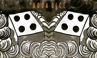 Visuel du projet Aqua Dice