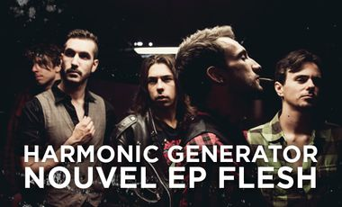 "Visuel du projet HARMONIC GENERATOR - Nouvel EP ""Flesh"""