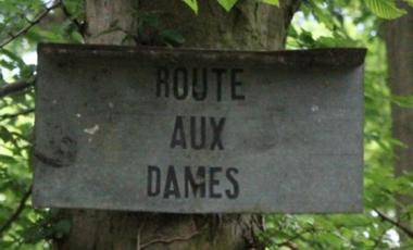 Project visual Route aux Dames