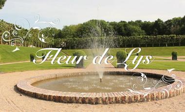 Visuel du projet Fleur De Lys