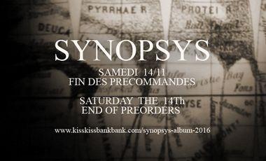 Visuel du projet Synopsys - Album 2016