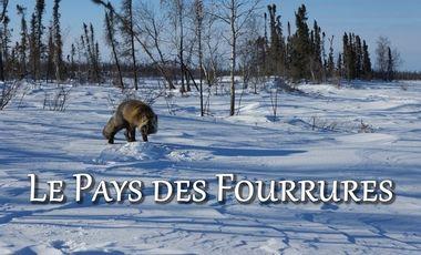 Visueel van project Le Pays des Fourrures