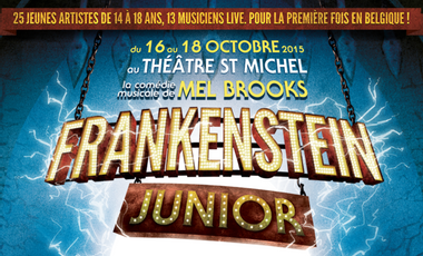 Visueel van project Frankenstein Jr