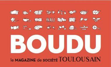 Visueel van project BOUDU