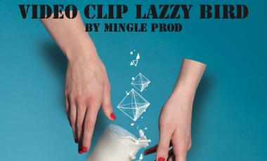 """Project visual Réalisation du clip """"Dans mes rêves"""" de Lazzy Bird par Mingle Prod"""