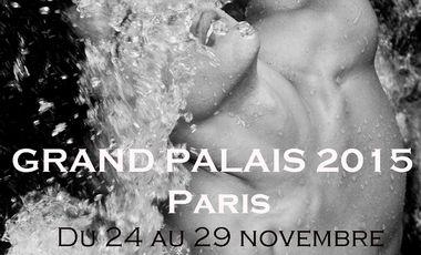 Visueel van project Expo Grand Palais