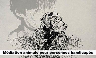 Project visual Médiation animale pour personnes handicapés