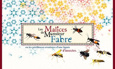 Visueel van project Les Malices de Monsieur Fabre