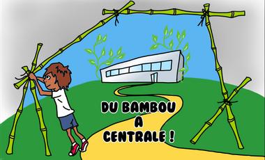 Project visual Du bambou à Centrale