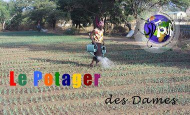 Project visual Le Potager des Dames